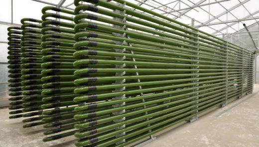 フォトバイオリアクターを用いた微細藻類バイオマスの生産コスト