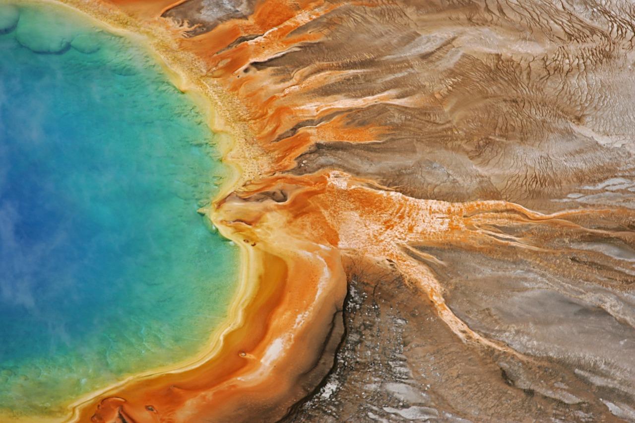 高温で生育する「温泉藻」の可能性