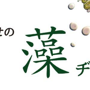 ちとせの藻ヂカラ[中編]  -ちとせの藻類プロジェクト-