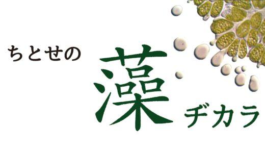 ちとせの藻ヂカラ[後編]  -ちとせの武器、3つの藻ヂカラ-