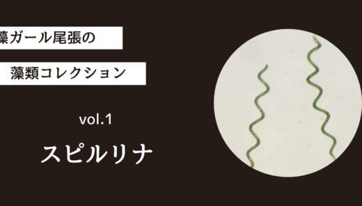 藻ガール尾張の藻類コレクション vol.1「スピルリナ」