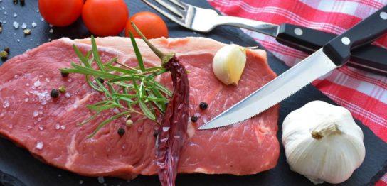 「植物肉」が注目され資金が集まる本当の理由 -2050年の「タンパク質危機」を藻類培養が救う-
