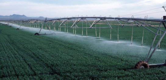 藻業は農業となれるのか? -米国「藻類農業法案」提出をうけて-