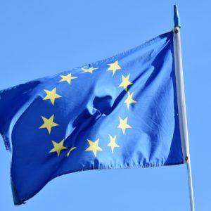欧州の藻類燃料以外の研究の変遷 part. 1