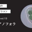 藻ガール尾張の藻類コレクション vol.13「シアノフォラ」