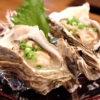 牡蠣の養殖業界に吹く新しい風
